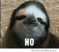 Sloth Meme Maker - how about no sloth gif weknowmemes