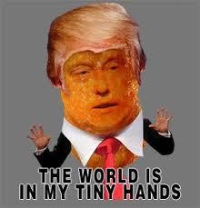 Cheetos Meme - open letter to president cheetos puff ball cotton candy hair