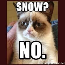 Grumpy Cat Snow Meme - snow no tard the grumpy cat meme generator