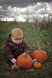 Pumpkin Farms In Wisconsin Dells by 26 Best Photography Location Pumpkin Patch Images On Pinterest