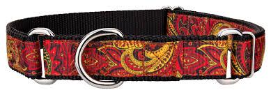 paisley ribbon buy paisley ribbon martingale collar online