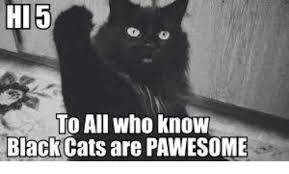 Hi5 Meme - hi 5 to all who know black cats are pawesome meme on me me