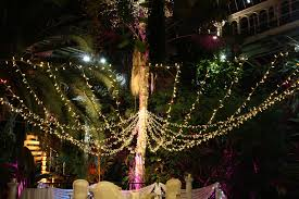 Backyard Wedding Lighting Ideas Accessories Christmas Lights Portland Oregon Wedding Light