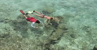 Kentucky snorkeling images Divi dive bonaire bonaire dive resorts jpg
