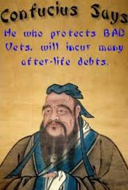 Confucius Says Meme - texas vet board watch texas board of veterinary medical examiners