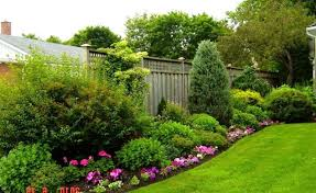 Garden Ideas For Dogs Cool Garden Ideas For Dogs Gallery Landscaping Ideas For