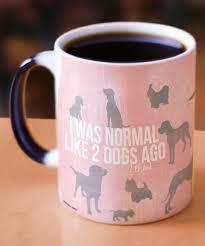 look at this zulilyfind crazy dog lady heat sensitive mug by