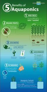 77 best diy aquaponics images on pinterest hydroponic gardening