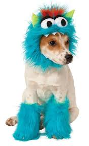 Extra Large Dog Halloween Costumes 69 Dog Halloween Costumes Images Pet Costumes
