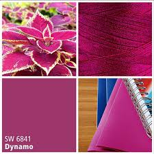 sherwin williams pink paint color dynamo sw 6841 a year in