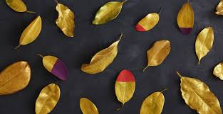 dipped in gold diy dipped fall leaves shari s berries