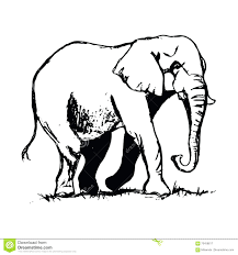 asian elephant ring holder images Elephant drawing trunk up at free for personal jpg