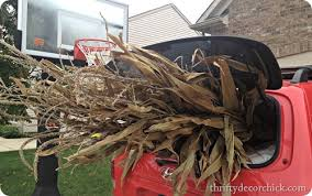 Corn Stalk Decoration Ideas Fall Porch Decor From Thrifty Decor