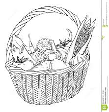 drawn vegetables basket drawing pencil and in color drawn
