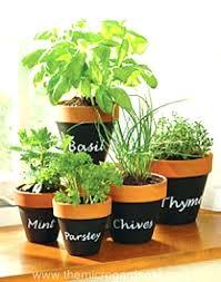 wall herb planters u2013 pianotiles info