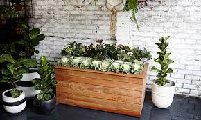 diy planters d i y moveable planter on wheels bunnings warehouse
