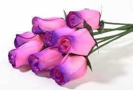 wooden roses one dozen wooden roses 8 pink purple tips 4 white