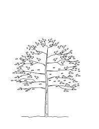 arlington tree committee home