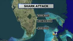Florida Shark Attack Map Diver Attacked By Bull Shark Off Riviera Beach Youtube