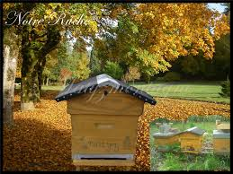 la bourboule chambre d hote chambres d hôtes à la bourboule matyzmontagne ruche dormir