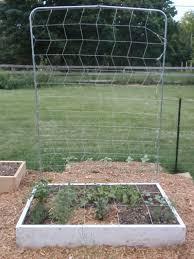 Vertical Garden Trellis - using vertical space with a square foot garden trellis