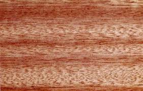 How To Stain Mohagany Doors Youtube by Meranti