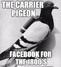 Meme Pics For Facebook - carrier pigeons are the old facebook imgflip