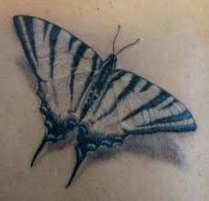 gallery for butterfly tattoos black and gray