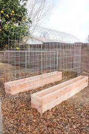 incredible raised bed boxes garden design with raised garden box