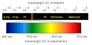 Visible Light Spectrum Wavelength Spectrophotometry