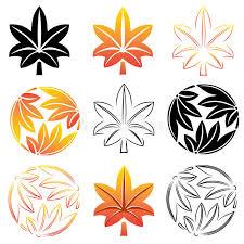 maple tree symbolism the stylized set maple leaves japanese symbolism illustration