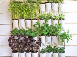 small space gardening ideas hgtv