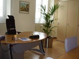 plantes bureau déco sol bureau bois plante verte ambiance aménagement de