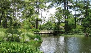 japanese garden points of interest hermann park conservancy