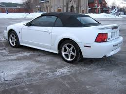 2004 white mustang convertible gorgeous 2004 mustang gt convertible leather like low