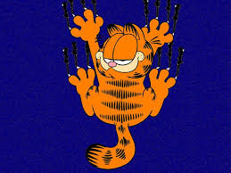 15 best garfield themed party images on pinterest birthday party