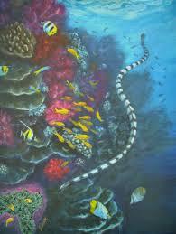 banded sea snake my marine life paintings jennifer belote wall murals banded sea snake