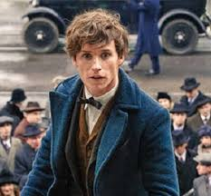 all you need to know about fantastic beasts and where to find them
