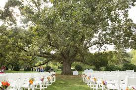 outside wedding decorations outdoor wedding decorations for trees frantasia home ideas