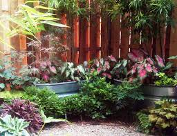 best planters galvanized bucket planters iimajackrussell garages best