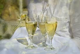 free images sunlight socializing celebration drink yellow