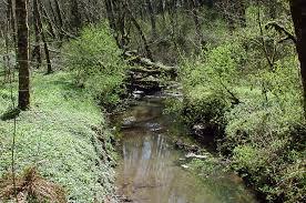 Lake Oswego 220 A Avenue Tryon Creek Wikipedia