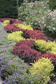 plante vivace soleil les couvre sol pous un jardin sans entretien détente jardin