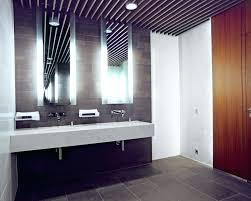 brushed nickel bathroom light bar u2013 shirokov site