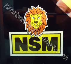 1993 nsm