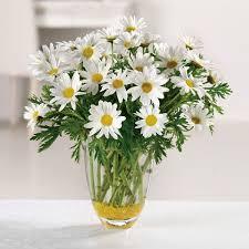 Flowers Columbia Sc - florists lancaster sc lancaster sc flower shops