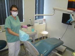 dental hygienist wikipedia
