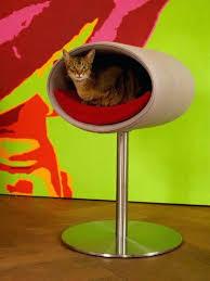 Cat Meme Generator - cat stand standing cat meme generator zle