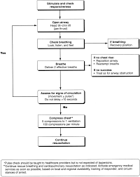 part 9 pediatric basic life support circulation