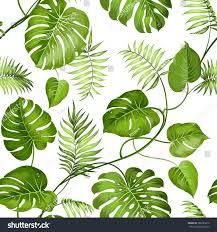Tropical Design Tropical Poster Design Stock Vector Ac Roxanabalint 11584270